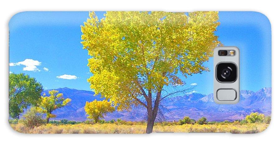 Sky Galaxy S8 Case featuring the photograph A Desert Autumn by Marilyn Diaz