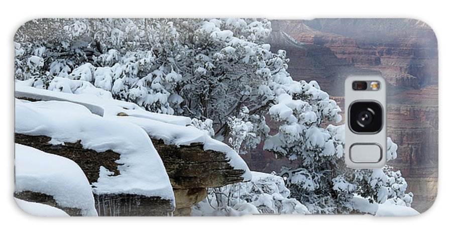 Snow Galaxy S8 Case featuring the photograph A Foot At The Canyon by Laurel Powell