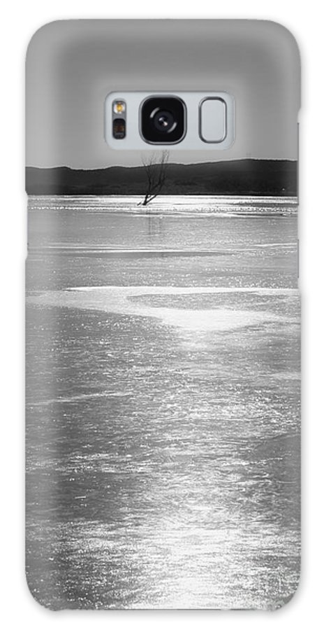 Roena King Galaxy S8 Case featuring the photograph A Frozen Lake by Roena King
