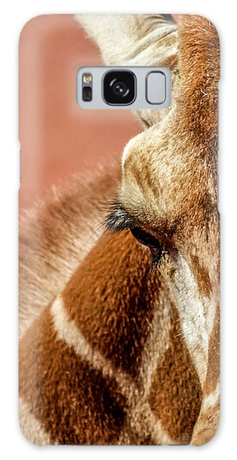 Animals Galaxy S8 Case featuring the photograph A Giraffe by Ernie Echols