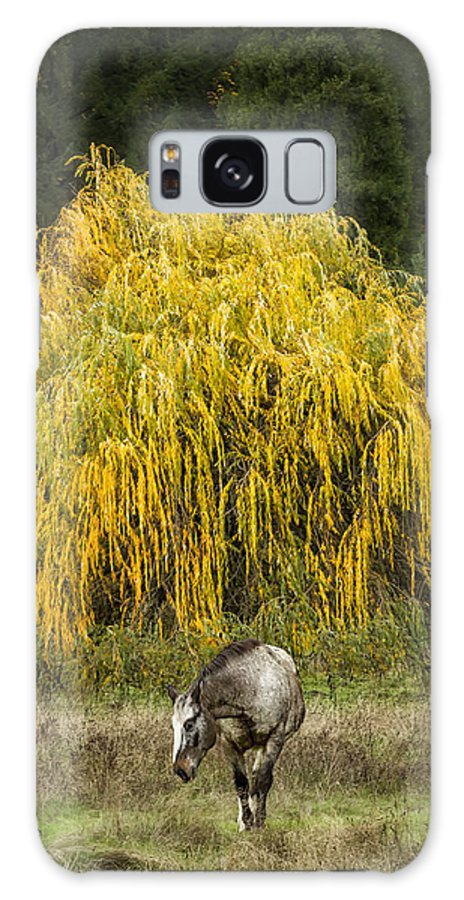 Horse Galaxy S8 Case featuring the photograph A Horse And A Willow Tree by Belinda Greb