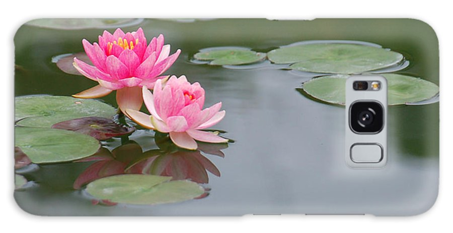 Pink Water Lilies Galaxy S8 Case featuring the photograph A Loving Pair by Suzanne Gaff