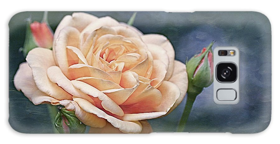 Rose Galaxy S8 Case featuring the photograph A Rose Is A Rose... by Maria Ismanah Schulze-Vorberg