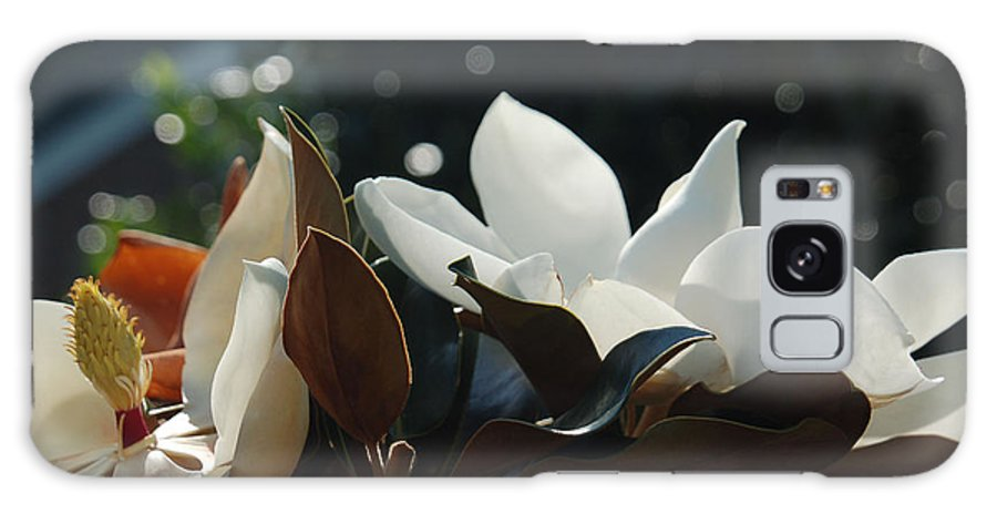 Magnolia Galaxy S8 Case featuring the photograph A Sea Of Magnolias by Suzanne Gaff