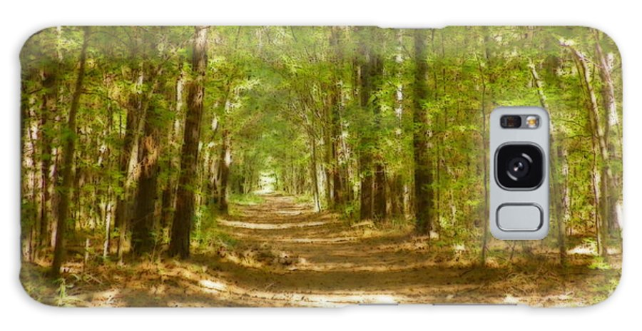 A Stroll In The Park Galaxy S8 Case featuring the photograph A Stroll In The Park by Lisa Wooten