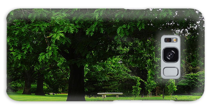 Green Galaxy S8 Case featuring the photograph A Tree And A Bench by Jeff Swan
