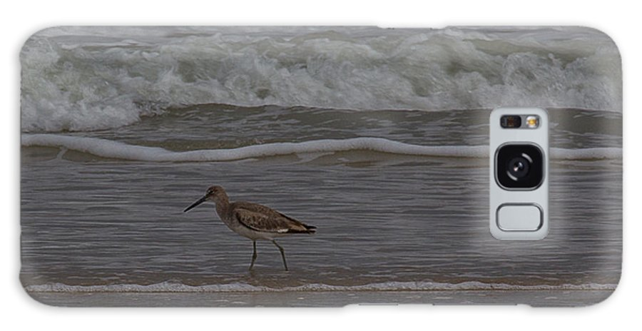 Sand Piper Galaxy S8 Case featuring the photograph A Walk On The Beach by Anita Miller