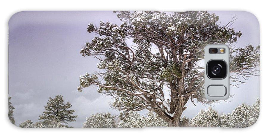 Winter Galaxy S8 Case featuring the photograph A Winter's Day by Saija Lehtonen