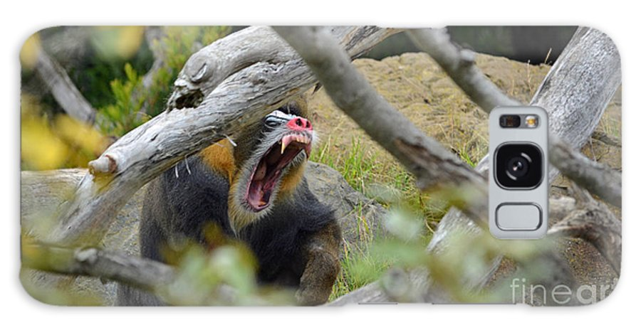 Mandrill Galaxy S8 Case featuring the photograph A Yawning Mandrill by Jim Fitzpatrick