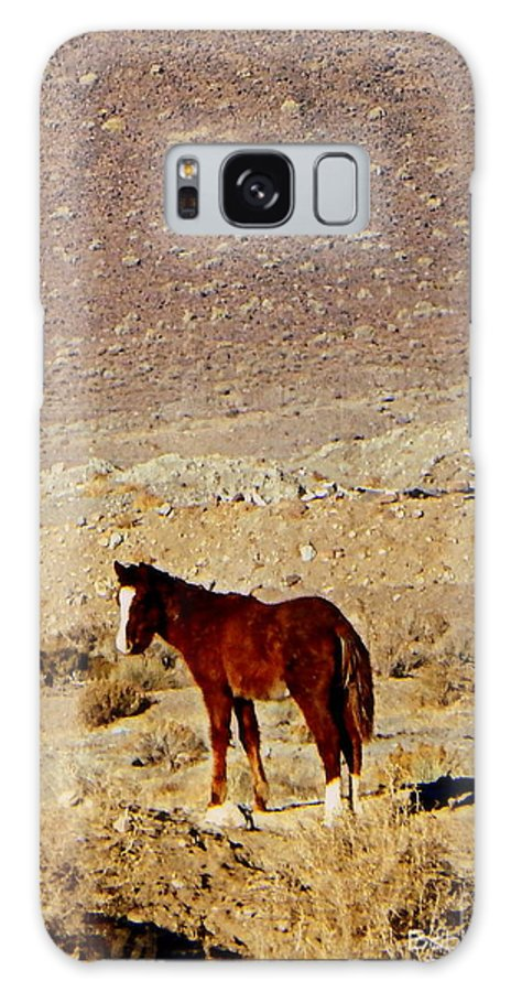 Acrylic Prints Galaxy S8 Case featuring the photograph A Young Mustang by Bobbee Rickard