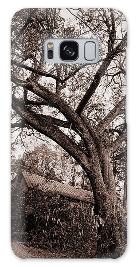 Farm Galaxy S8 Case featuring the photograph Abandoned House And Grand Oak In Sepia by Anthony Ackerman