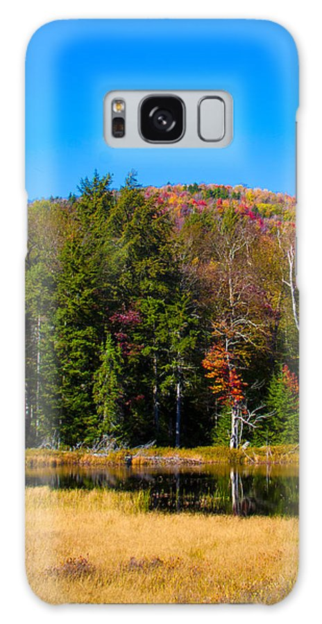 Adirondack's Galaxy S8 Case featuring the photograph Adirondack Color IIi by David Patterson