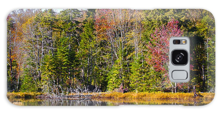 Adirondack's Galaxy S8 Case featuring the photograph Adirondack Color Near Old Forge New York by David Patterson