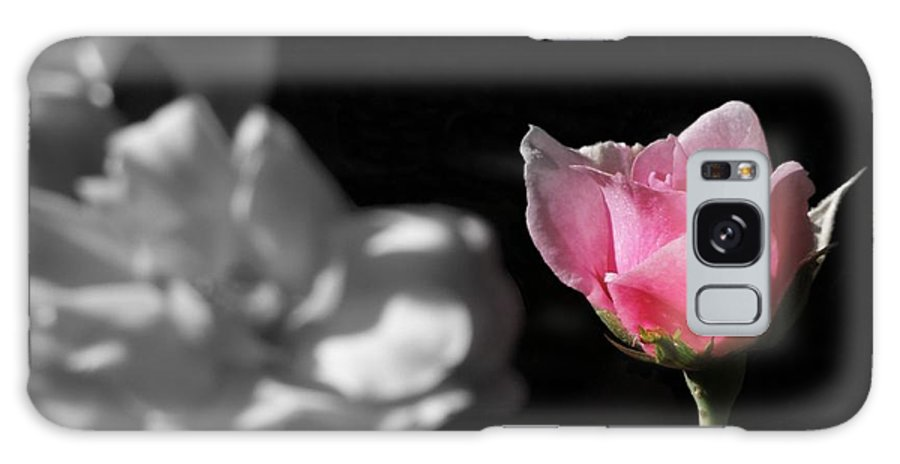 Rose Galaxy S8 Case featuring the photograph Admiration by Renee Trenholm
