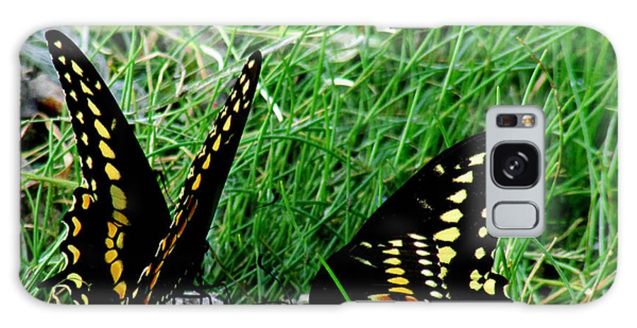 Insects Galaxy S8 Case featuring the photograph Aep102a by Scott B Bennett