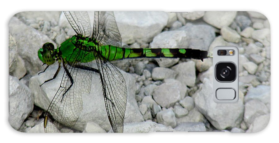Green Dragon Fly Galaxy S8 Case featuring the photograph Aep683a by Scott B Bennett