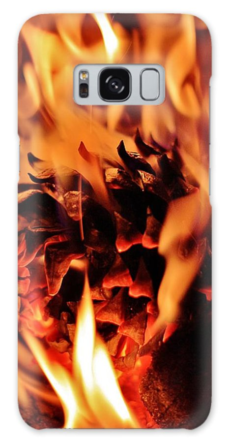 Pine Galaxy S8 Case featuring the photograph Aflame by Benjamin Yeager