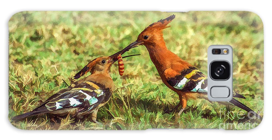 Hoopoe Galaxy S8 Case featuring the photograph African Hoopoe Feeding Chick by Liz Leyden