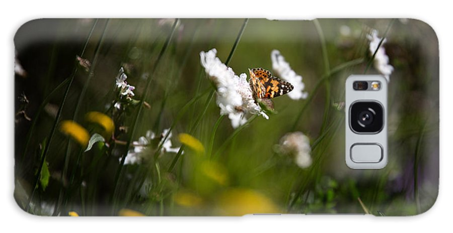 Butterfly Galaxy S8 Case featuring the photograph African Monarch Butterfly In Garden by David Van der Want