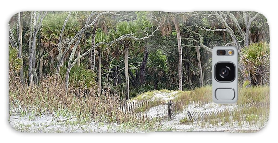 Forest Galaxy S8 Case featuring the photograph After The Storm by Carol Bradley