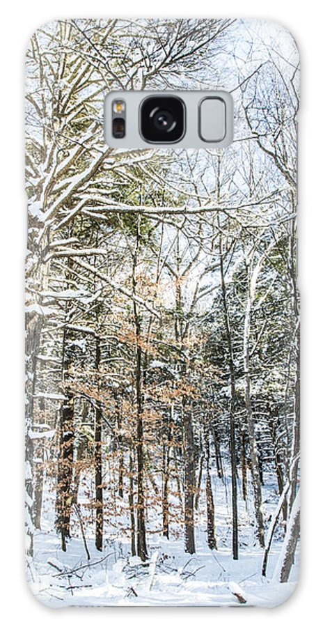 Snow Galaxy S8 Case featuring the photograph After The Storm by Jonathan Steele