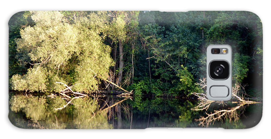 Nature Galaxy Case featuring the photograph Afternoon Reflections by Rennae Christman