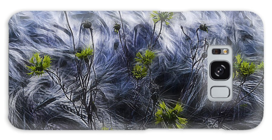Cornflowers Galaxy S8 Case featuring the photograph Against The Wind by Joachim G Pinkawa