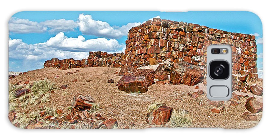 Agate House In Petrified Forest National Park Galaxy S8 Case featuring the photograph Agate House In Petrified Forest National Park-arizona by Ruth Hager