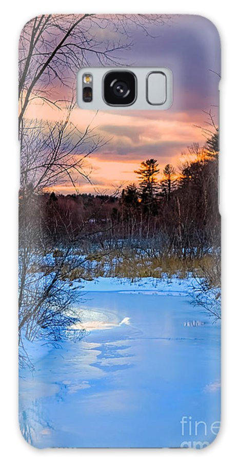 Framington Galaxy S8 Case featuring the photograph Alive And Well In Maine by Brenda Giasson