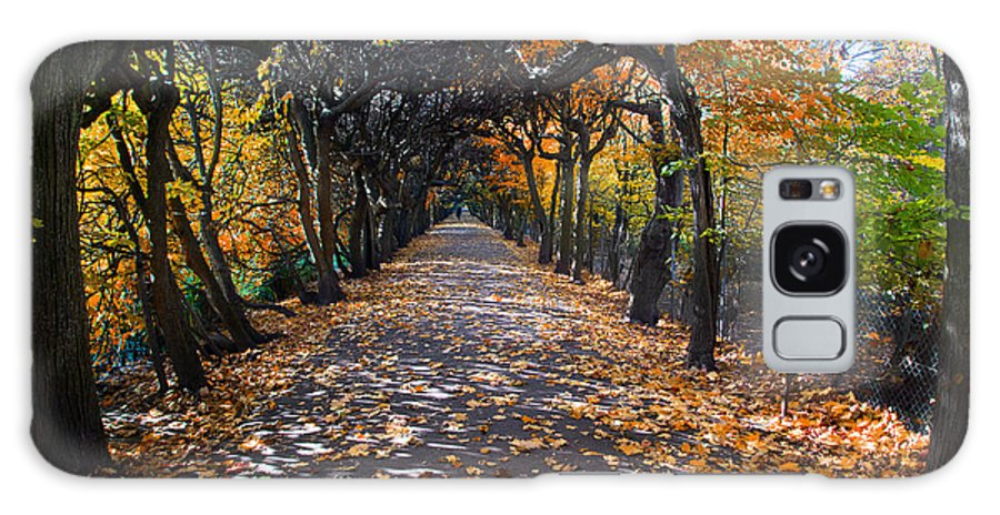 Fall Galaxy S8 Case featuring the photograph Alley With Falling Leaves In Fall Park by Michal Bednarek
