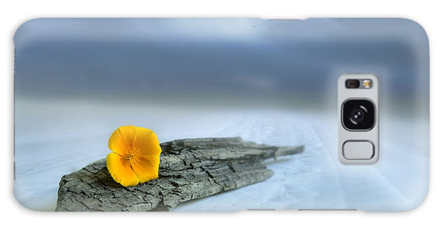 Art Galaxy S8 Case featuring the photograph Alone On The Beach by Veikko Suikkanen