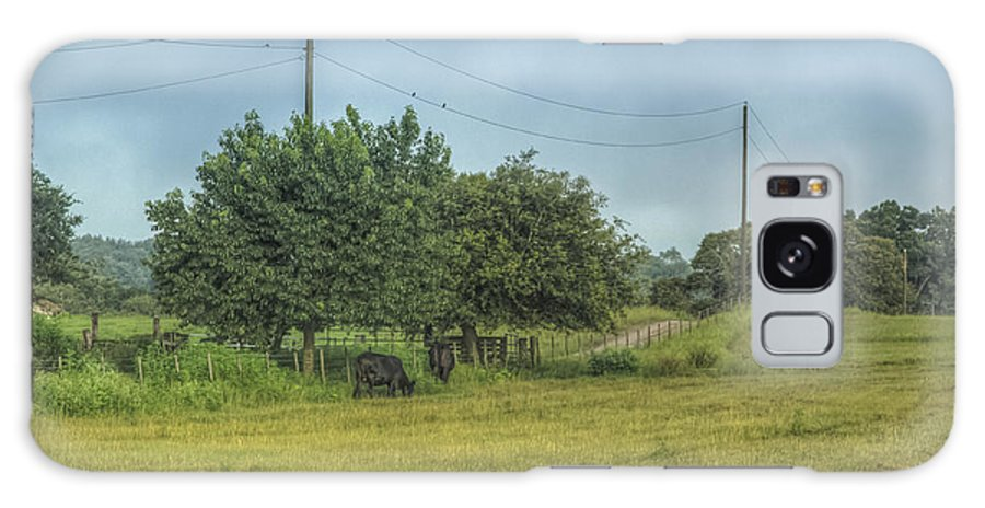 Florida Galaxy S8 Case featuring the photograph Along A Rural Road by Jane Luxton