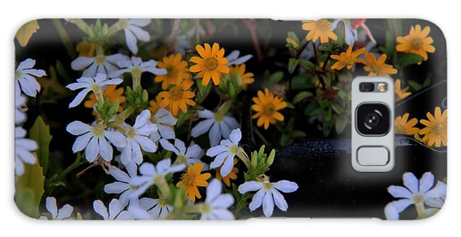 Blue Galaxy S8 Case featuring the photograph Alpine Beauties by Frank Wickham