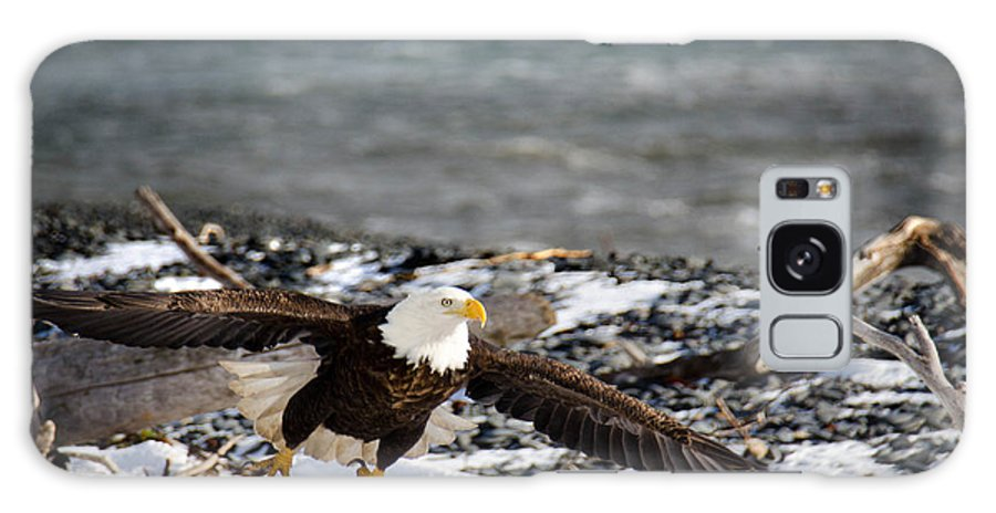 Bald Eagle Galaxy S8 Case featuring the photograph Amazing Bald Eagle by Debra Miller
