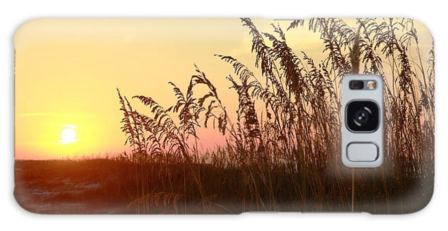 Sea Oats Galaxy S8 Case featuring the photograph Amber Waves Of Oats by Steve Jones
