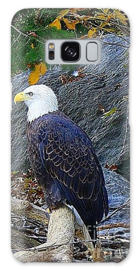 American Bald Eagle - Birds - Animals - Nature - Bold Eagles - Galaxy S8 Case featuring the photograph American Bald Eagle by Dora Sofia Caputo Photographic Design and Fine Art