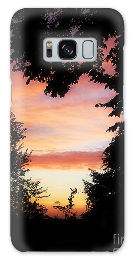 Skyscape Galaxy S8 Case featuring the photograph Ams 184 by Scott B Bennett