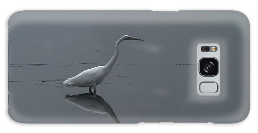 Birds Galaxy S8 Case featuring the photograph An Egret Standing In Its Reflection by Jeff Swan