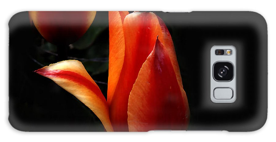 Fire Galaxy S8 Case featuring the photograph an Invitation... by Milena Ilieva