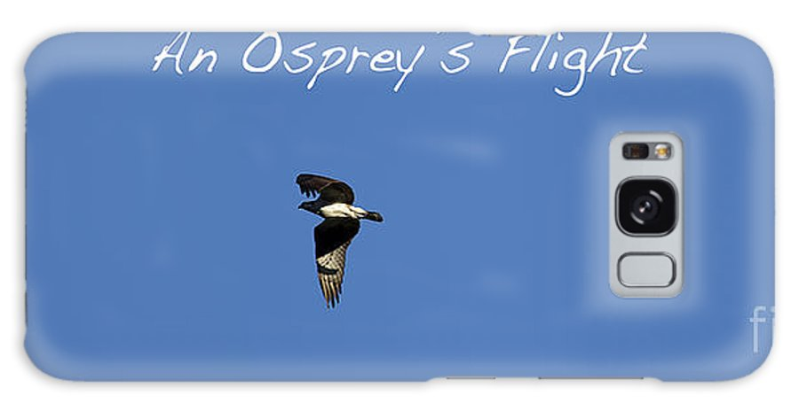 Osprey Galaxy S8 Case featuring the photograph An Ospreys Flight by Belinda Greb