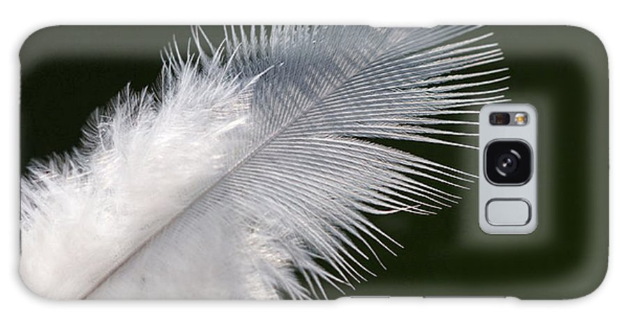 Angel Galaxy S8 Case featuring the photograph Angel Feather by Carol Lynch