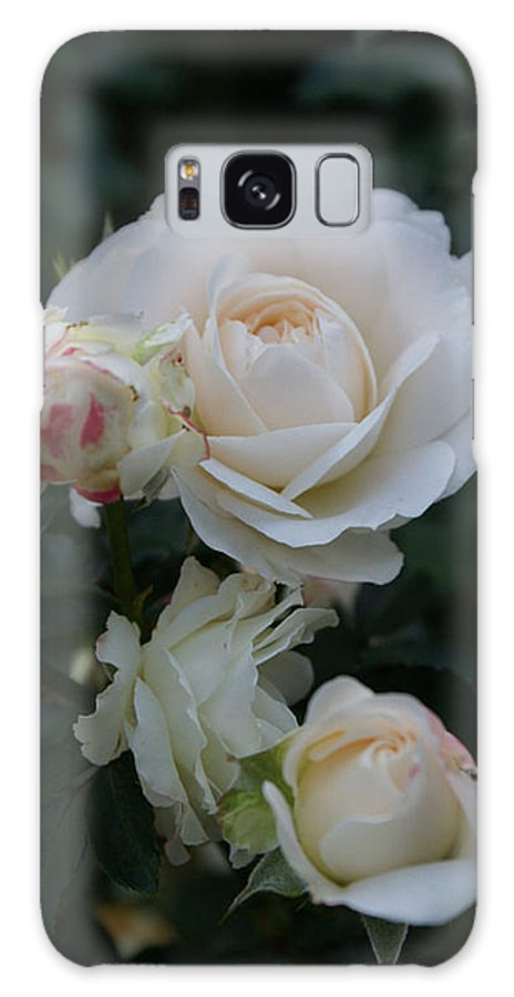 White Rose Buds Galaxy S8 Case featuring the photograph Angel Kiss II by Jacqueline Russell