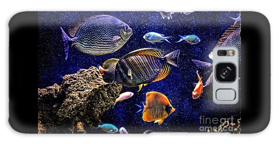 Aquarium Galaxy S8 Case featuring the photograph Aquarium by Savannah Gibbs