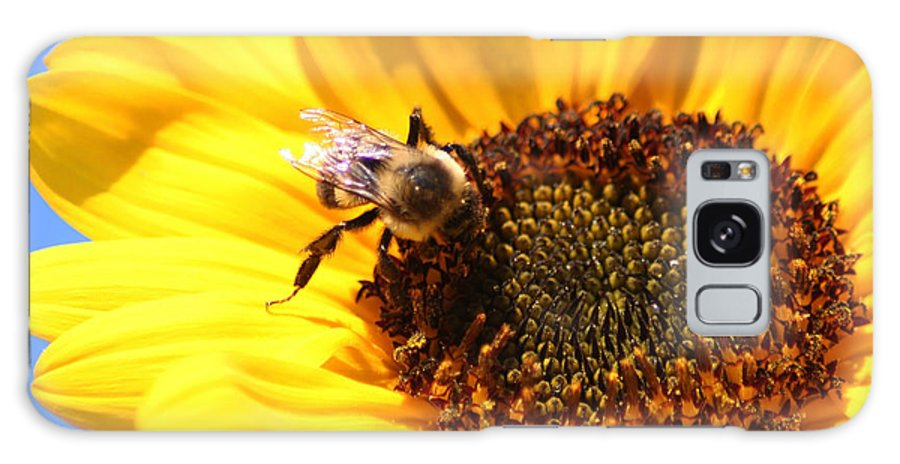 Flower Galaxy S8 Case featuring the photograph Are You Buzzing? by Sheryl Chapman Photography