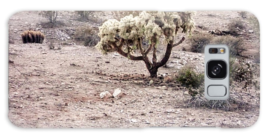 ©2013 Chelsylotze International Studio Galaxy S8 Case featuring the photograph Arizona Desert Shrubs by ChelsyLotze International Studio