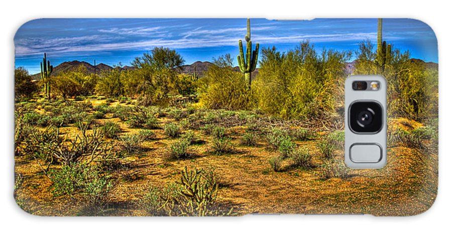 Cactus Galaxy S8 Case featuring the photograph Arizona Landscape Iv by David Patterson