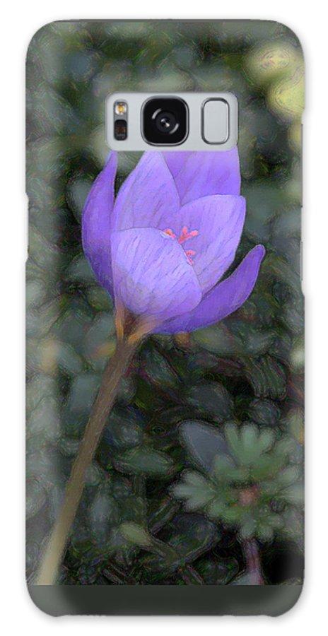 Artistic Galaxy S8 Case featuring the photograph Purple Flower by John Freidenberg
