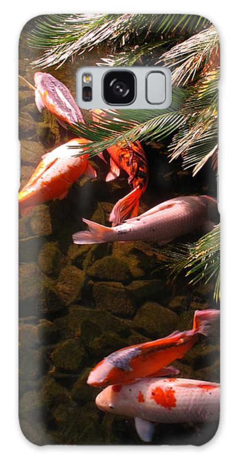 Koi Galaxy S8 Case featuring the photograph Asian Beauties by Jennifer Wheatley Wolf