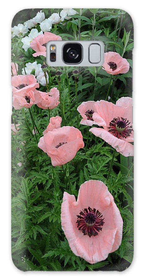 Massachusetts Galaxy S8 Case featuring the photograph At Bridge Of Flowers -- Massachusetts by Brian Hoover