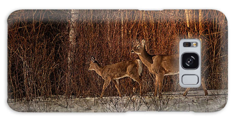 Deer Galaxy S8 Case featuring the photograph At The Edge Of The Woods by Susan Capuano